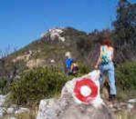 Markierete Fuβwege in die Berge